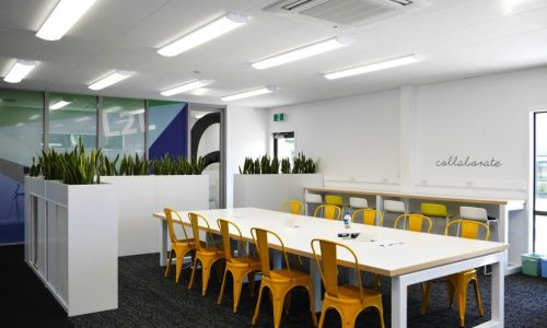 westmount-school-northland-education-learning-architecture-arcline-kids (8)